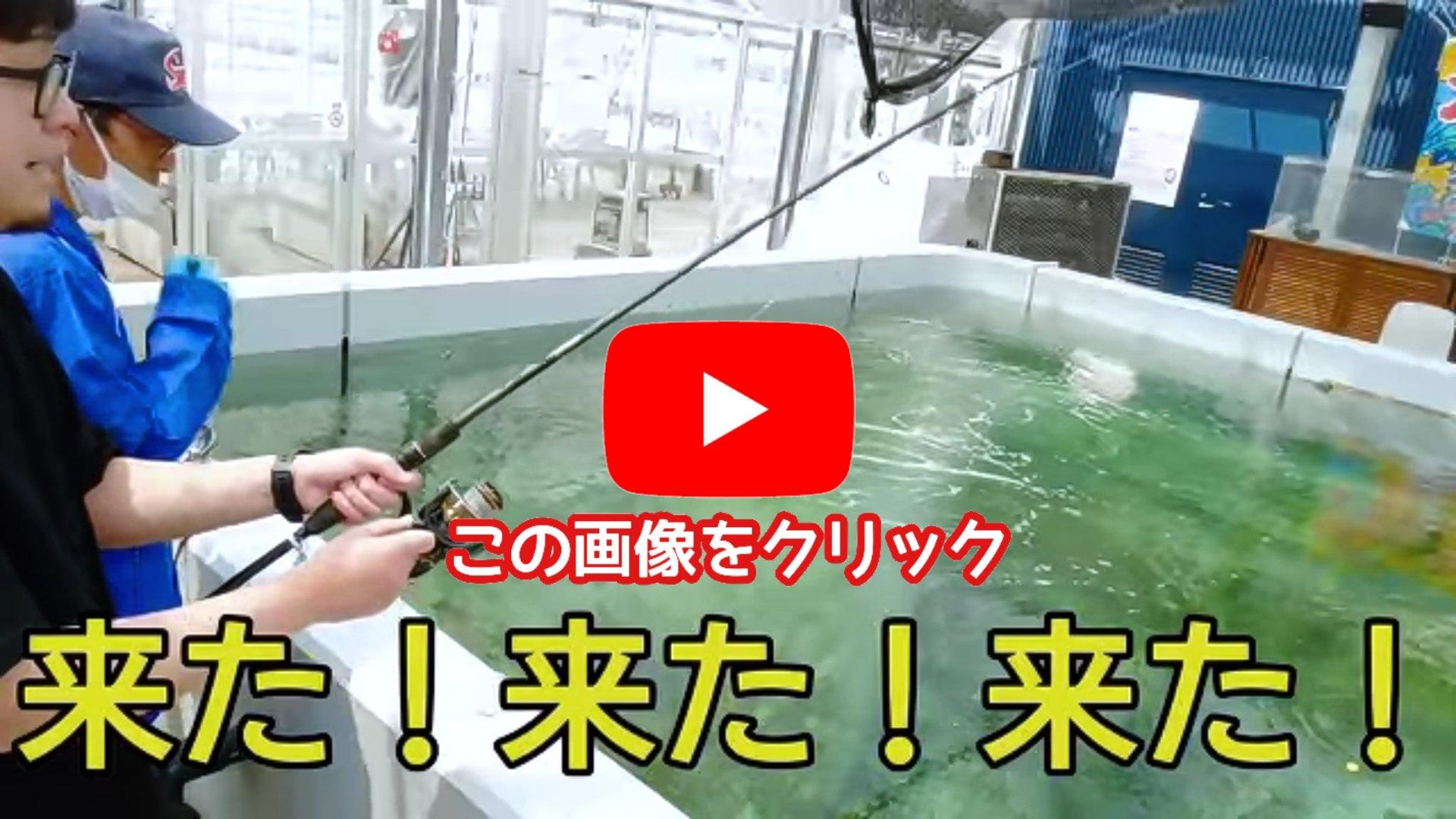 【釣ってみんでフィッシング】釣って食べる体験施設