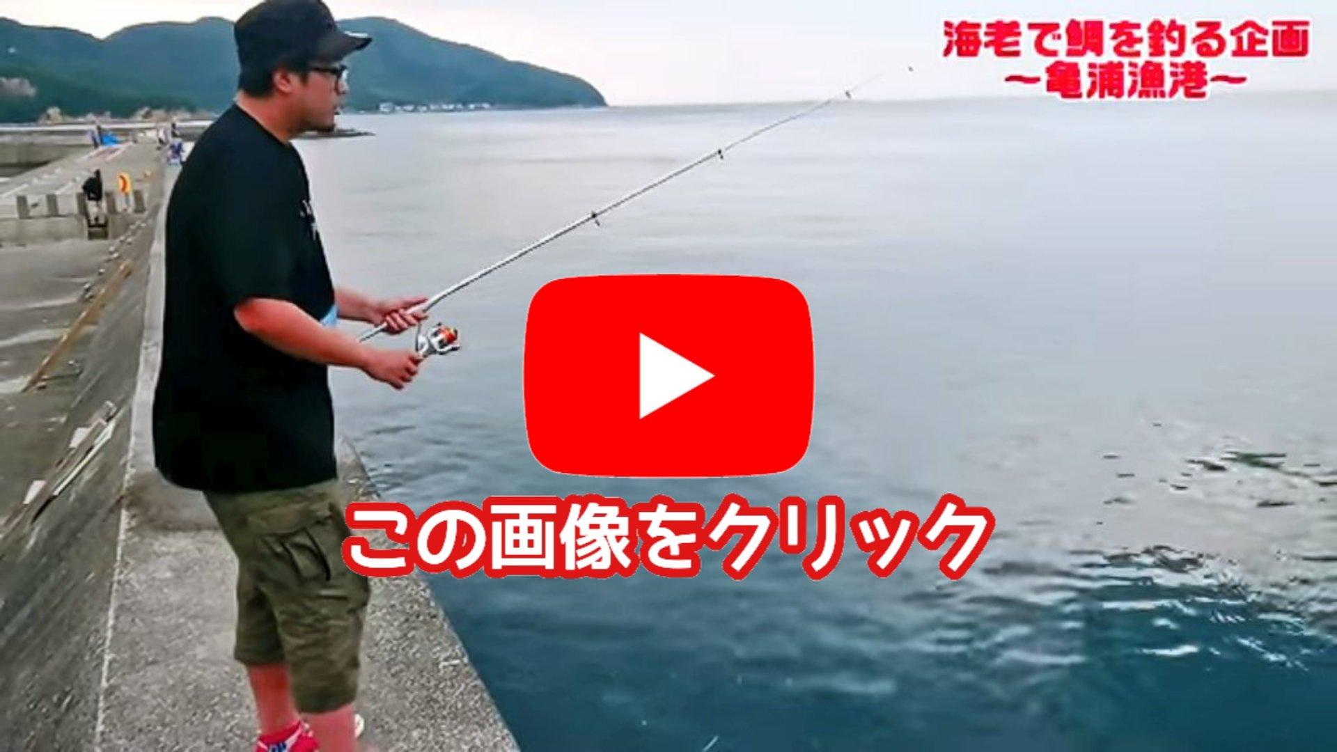 【亀浦観光港】鳴門の絶景を楽しむ