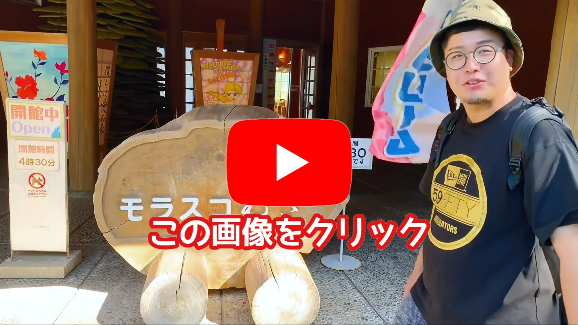 【モラスコむぎ】貝の博物館